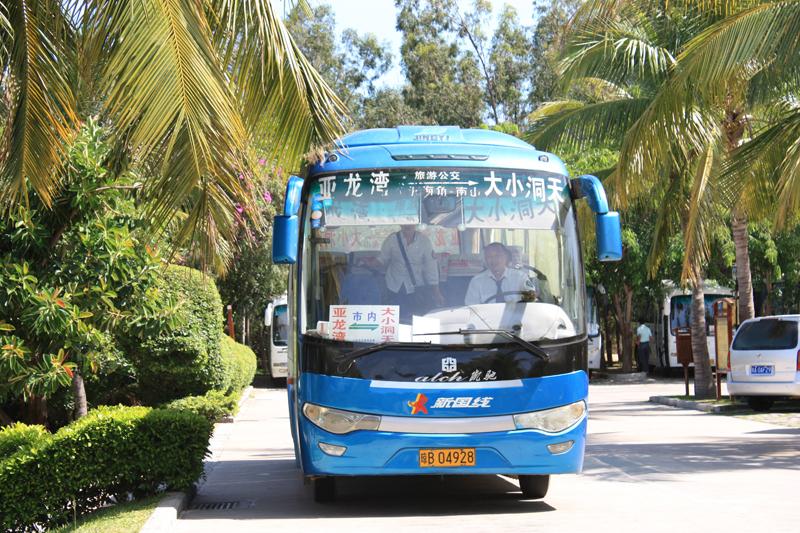 автобус в санье