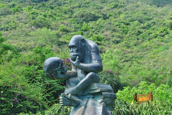 остров обезьян в Санье